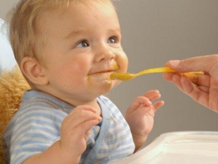 Примерное меню ребенка 8 месяцев