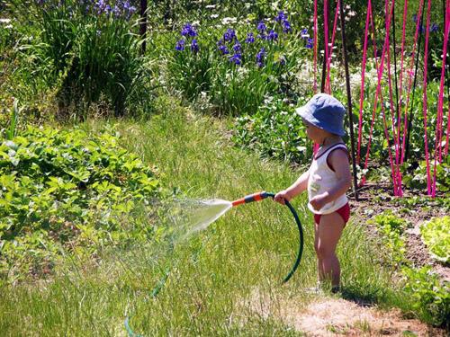 Дети на даче: безопасность ребенка