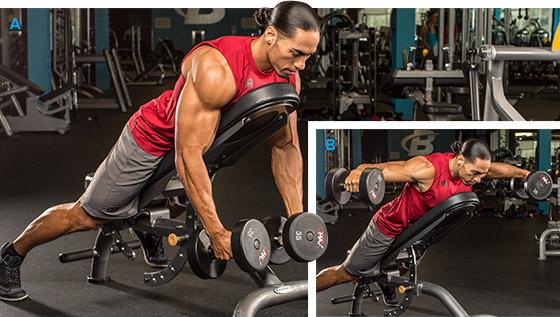7 эффективных упражнений на задние дельты. Разведение гантелей лежа на наклонной скамье лицом вниз