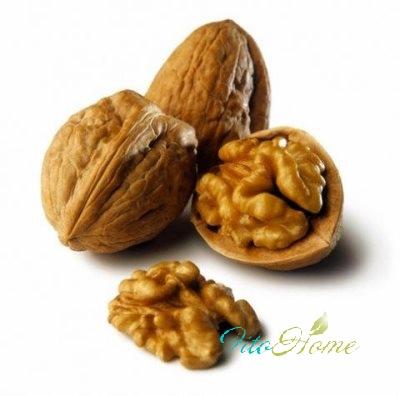 грецкий орех и его показания к применению
