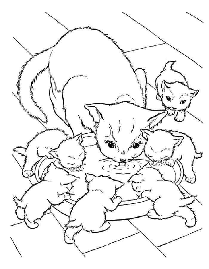 Разукрашки для девочек с кошками