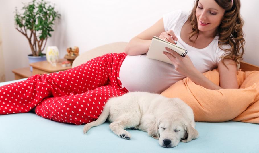 акушерский срок беременности