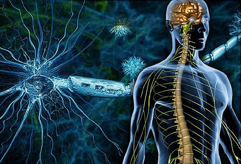 Демиелинизирующие заболевания головного мозга