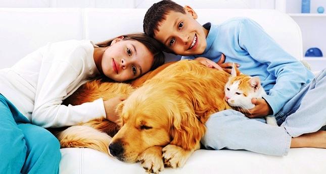 Как бороться с аллергией на животных у детей?