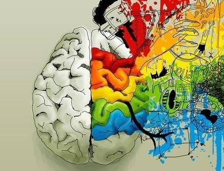 Функциональная асимметрия головного мозга