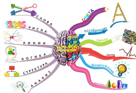 Межполушарная асимметрия головного мозга