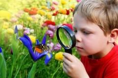 Экологическое воспитание детей в семье