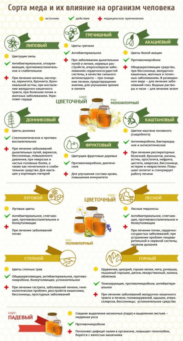 влияние мёда на организм