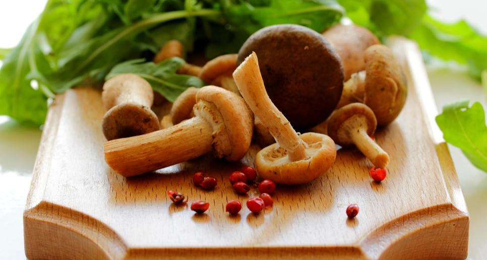 Как не отравиться грибами: меры предосторожности