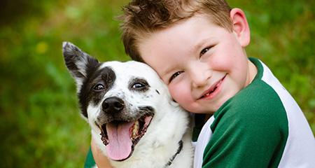 Домашние животные для маленьких детей: как выбрать?