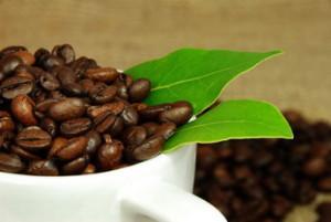 кофеин и травы