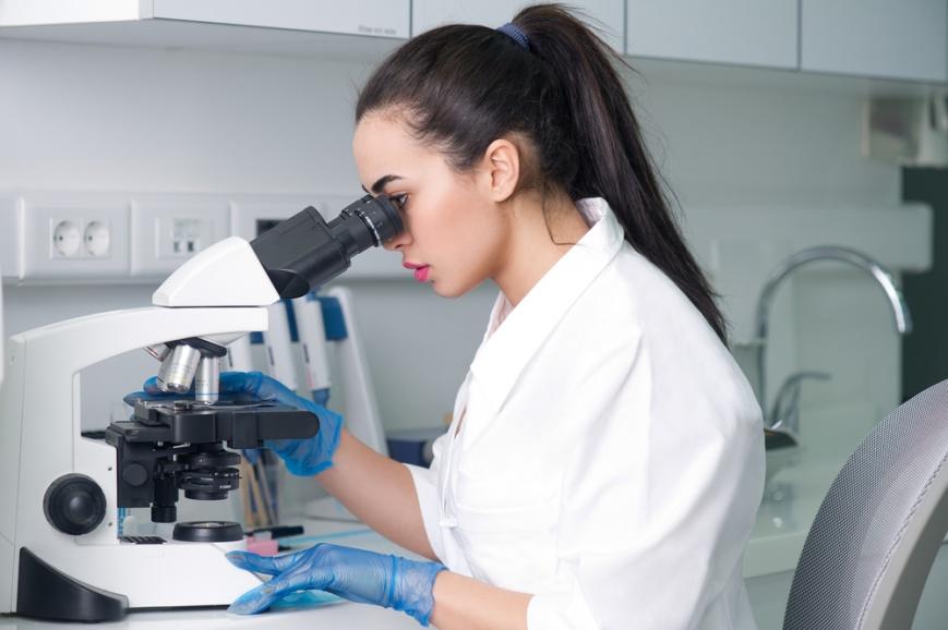 Культивирование эмбрионов до стадии бластоцисты