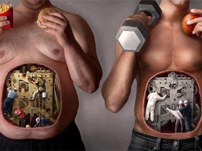 питание, образ жизни, организм