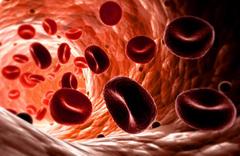 MCV анализ крови