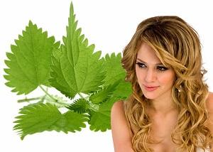 Рецепты лечения волос из народной медицины