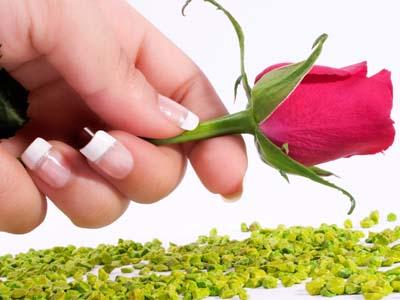 роза в руке