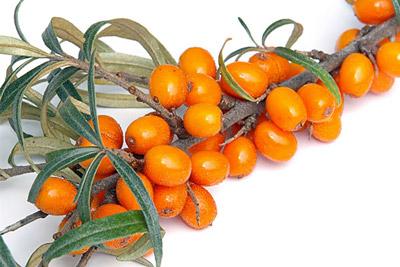 одна из самых витаминных ягод