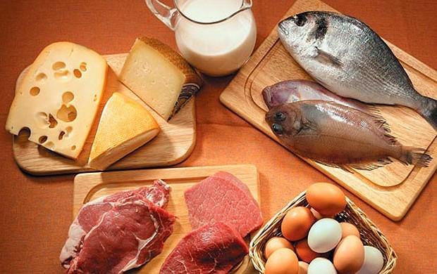 protein-dieta