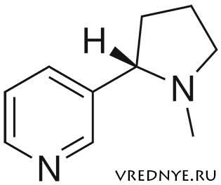 Вырабатывает ли организм никотин – или это миф?