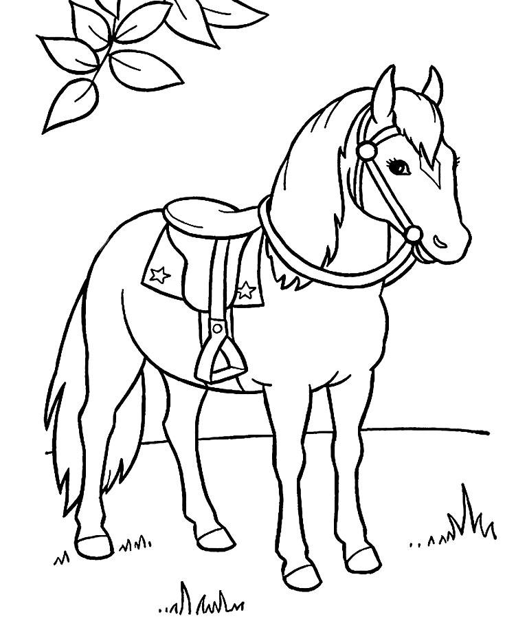 Лошади раскраски для детей распечатать 5