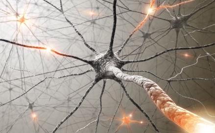 Причина возникновения рассеянного склероза