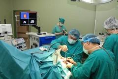 Лечение ретроцеребеллярной кисты головного мозга