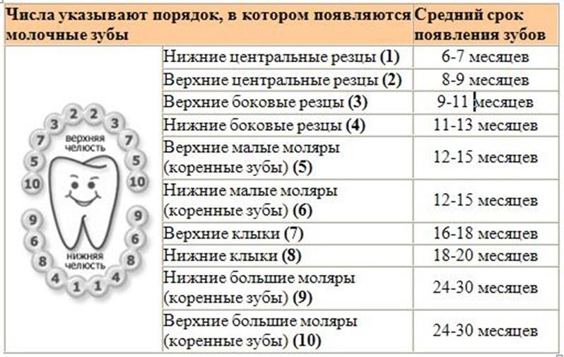 гороскоп какая бывает температура у деток когда режутся зубы предлогов