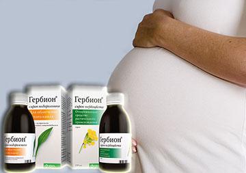 сироп гербион при беременности