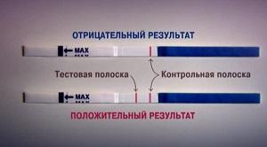 Как устроен тест на беременность