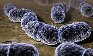 Причиной может быть ревматизм - который возникает из-за стрептококковой инфекции