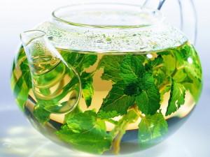 травяной чай при остеохондрозе
