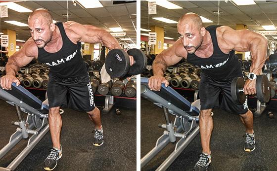 trening-plech-osnovnye-pravila-1
