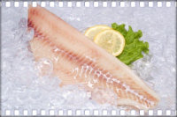 Прикорм рыбой