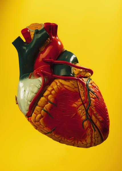 Как определить сердечную недостаточность?