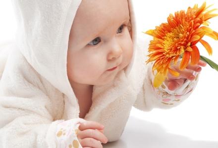 Какие цветы нравятся малышам